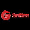 logo gnfi